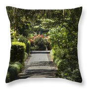 Brookgreen Gardens Path Throw Pillow