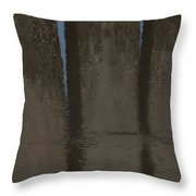 Brown And Blue Reflection Throw Pillow
