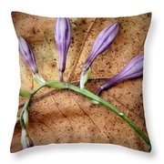 Brown And Purple Throw Pillow