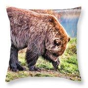 Brown Bear 201 Throw Pillow