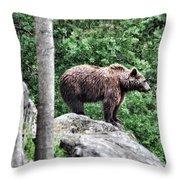 Brown Bear 208 Throw Pillow