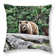 Brown Bear 209 Throw Pillow