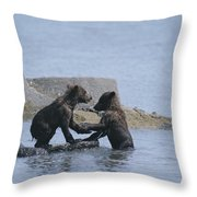 Brown Bear Cubs Playing On A Rocky Throw Pillow