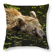 Brown Bear Swimming Throw Pillow