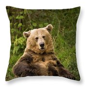 Brown Bear Ursus Arctos, Asturias, Spain Throw Pillow