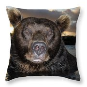 Brown Bear Ursus Arctos In River Throw Pillow