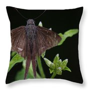 Brown Butterfly Dorantes Longtail Throw Pillow