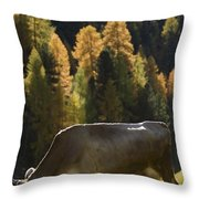 Brown Cow In Valle Lunga Throw Pillow