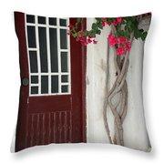 Brown Door In Greece Throw Pillow