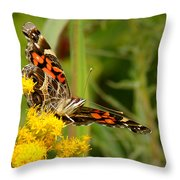 Brown-eyed Beauty Throw Pillow