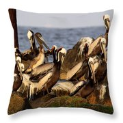 Brown Pelicans - Beauty Of Sand Island Throw Pillow