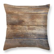 Brown Sandals On Withered Wood Throw Pillow