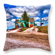 Brown Spring Throw Pillow