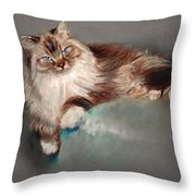 Browny White Throw Pillow