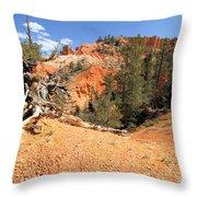 Bryce Canyon Canyon Throw Pillow