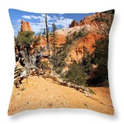 Bryce Canyon Forest Throw Pillow