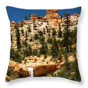 Bryce Water Canyon Throw Pillow