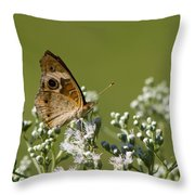 Buckeye Butterfly And Lesser Snakeroot Wildflowers Throw Pillow