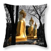 Buddha In The Jungle Throw Pillow by Adrian Evans
