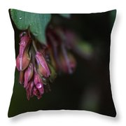 Budding Hearts Throw Pillow