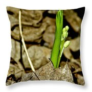 Budding Lilly Throw Pillow