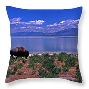 Buffalo And The Great Salt Lake Throw Pillow