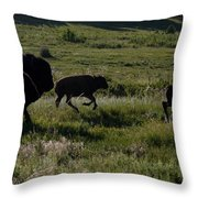 Buffalo Bison Roaming In Custer State Park Sd.-1 Throw Pillow