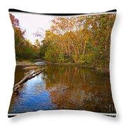 Buffalo Creek Throw Pillow