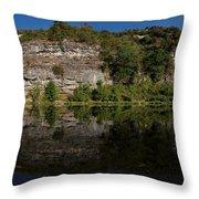 Buffalo River Bend Panorama Throw Pillow