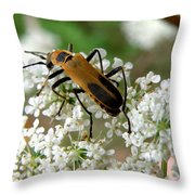 Bug And Flowers Throw Pillow