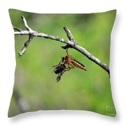 Bug Eat Bug Throw Pillow