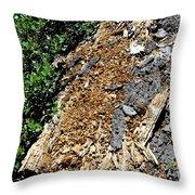 Bug Filled Bear Clawed Log Throw Pillow