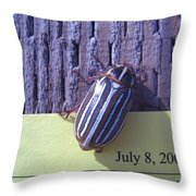 Bug Lands On My Paper Throw Pillow
