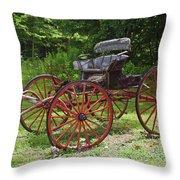 Buggy 11628 Throw Pillow