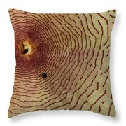 Bugs Life Throw Pillow