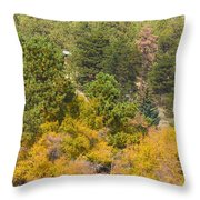 Bull Elk Lake Crusing With Autumn Colors Throw Pillow