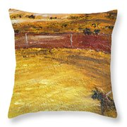 Bull-fights Throw Pillow