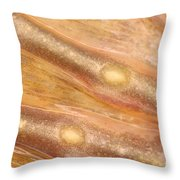 Bull Frog Foot Throw Pillow by Ted Kinsman