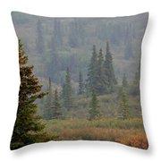Bull Moose In Alaska Throw Pillow