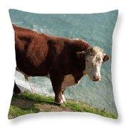 Bull On The Edge Throw Pillow