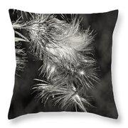 Bull Thistle Monochrome Throw Pillow