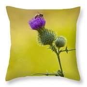 Bull Thistle With Bumble Bee Throw Pillow