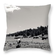 Bull With Buffalo Throw Pillow