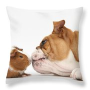 Bulldog & Guinea Pig Throw Pillow