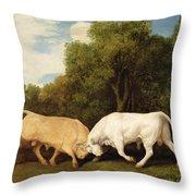 Bulls Fighting Throw Pillow