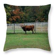 Bully Bull Throw Pillow