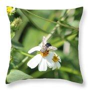 Bumble Bee 2 Throw Pillow