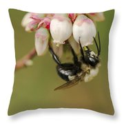 Bumble Bee And Blueberry Blossoms Throw Pillow