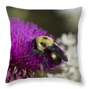 Bumble Bee And Bristle Thistle Throw Pillow