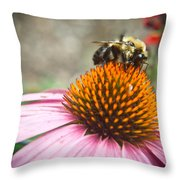 Bumble Bee Feeding On A Coneflower Throw Pillow